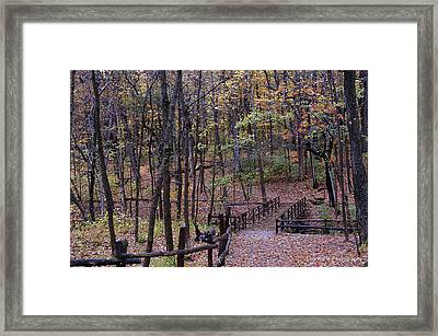 Fall In Yellowsprings Framed Print by Tina Karle