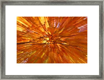 Fall Inside Out Framed Print by Rachel Cohen