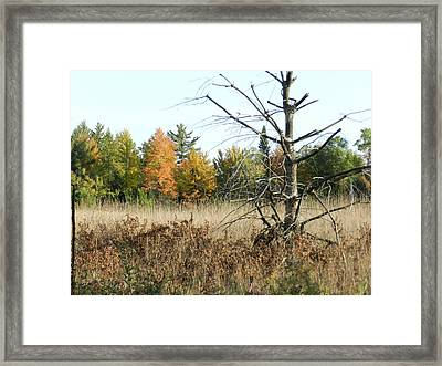 Fall Is Here Framed Print by Dennis Leatherman