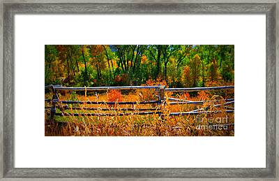 Framed Print featuring the photograph Fall  by Janice Westerberg