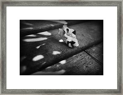 Fall Leaves Iv Framed Print