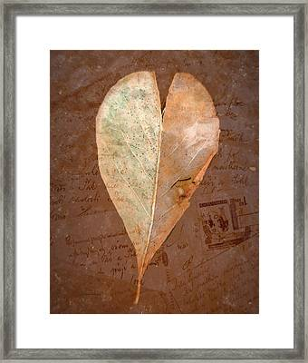 Fall Love Letters Framed Print by Cindy Wright