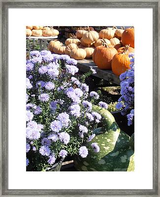 Fall Medley Framed Print by Kimberly Perry