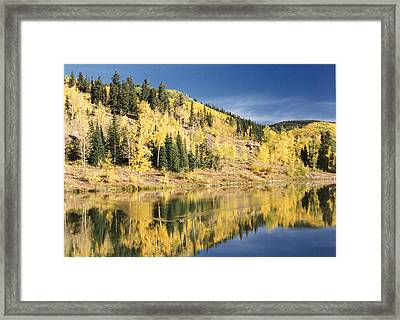 Fall Mirror Image Framed Print by Stacey Grant