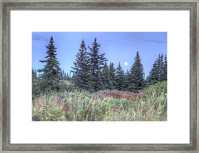 Framed Print featuring the photograph Fall Moon by Michele Cornelius