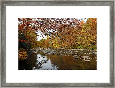 Framed Print featuring the photograph Fall On Laurel Hill Creek by Dan Myers