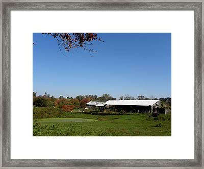 Fall On The Farm Framed Print by Kim Galluzzo Wozniak