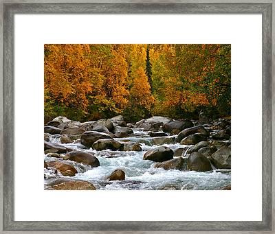 Fall On The Little Susitna River Framed Print