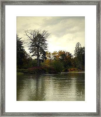 Fall On The Snohomish River Framed Print by Gwyn Newcombe