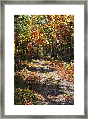 Fall On The Wyrick Trail Framed Print by Denise Romano