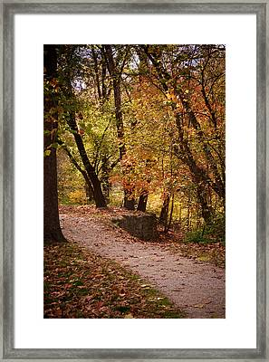 Fall Path Framed Print