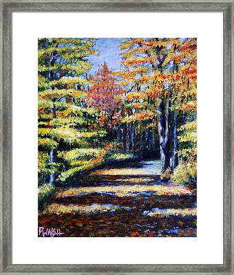 Fall Path Framed Print by Paul Walsh