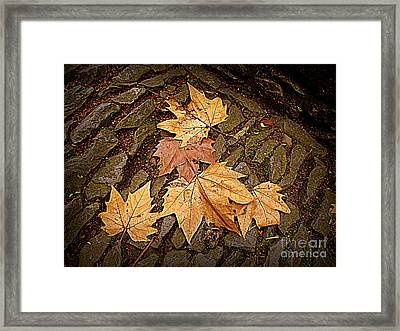 Fall Pattern Framed Print