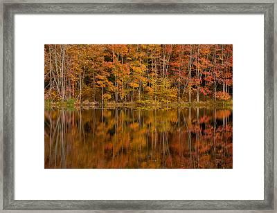 Fall Reflection Framed Print by Karol Livote