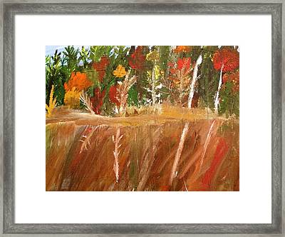Fall Reflection On Lake Framed Print