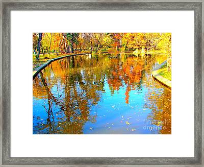 Fall Reflections Framed Print by Ana Maria Edulescu