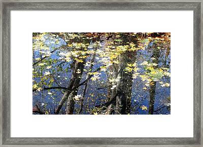 Framed Print featuring the photograph Fall Reflections by I'ina Van Lawick