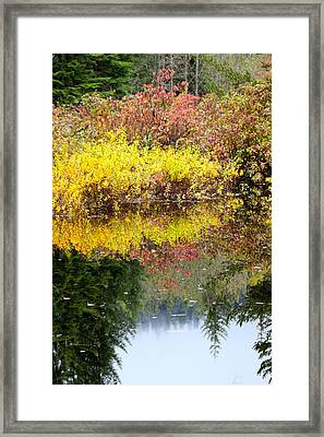 Framed Print featuring the photograph Fall Reflections by Sylvia Hart