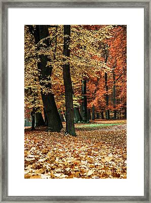 Fall Scenery Framed Print by Hannes Cmarits