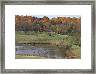 Fall Scenic Of Horse Farm And Pond Framed Print