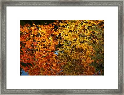 Fall Textures In Water Framed Print