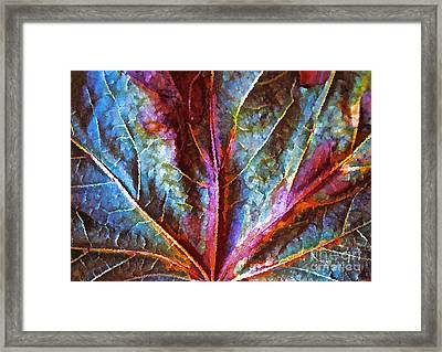 Fall Up Close Framed Print by Gwyn Newcombe