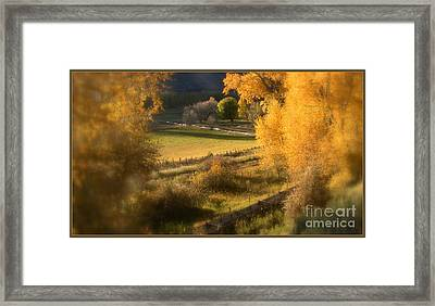 Fall View Framed Print