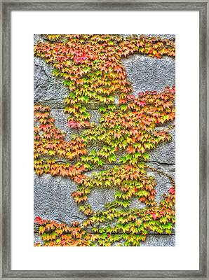 Framed Print featuring the photograph Fall Wall by Michael Frank Jr