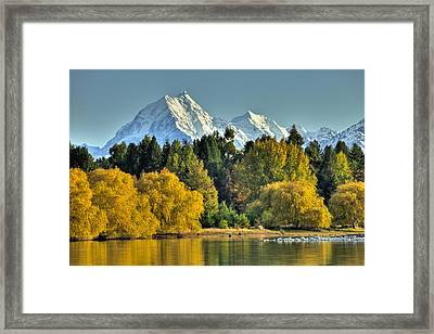 Fall Willow And Cottonwoods At Lake Framed Print by Colin Monteath