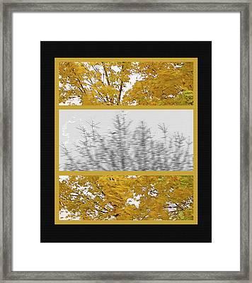 Fall Wind Triptych Framed Print by Steve Ohlsen