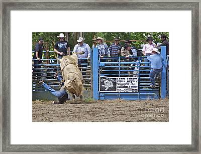 Fallen Cowboy Framed Print by Sean Griffin