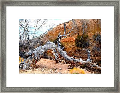 Fallen Dragon Framed Print by Diane montana Jansson