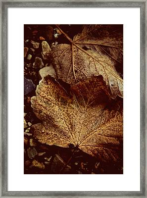 Fallen From Grace Framed Print by Odd Jeppesen