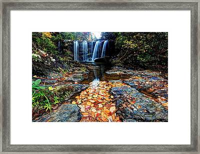 Framed Print featuring the photograph Fallen Leaves by Doug McPherson