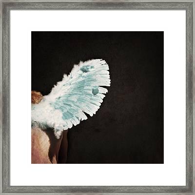 Fallen Framed Print by Lisa Knechtel