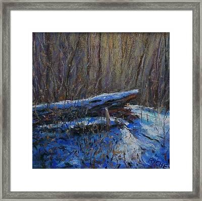 Fallen Wood In Winter Framed Print by Bob Richey