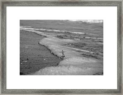Falling For The Sea Framed Print by Betsy Knapp