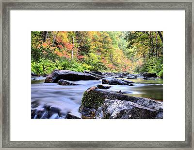 Falling Into Autumn Framed Print by JC Findley