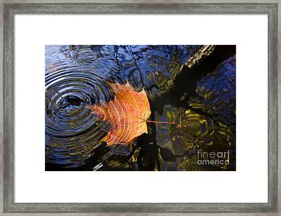 Falling To The Water Framed Print