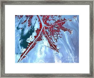 False Color Satellite View Framed Print by Stocktrek Images