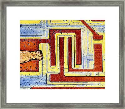 False Colour Sem Of Integrated Circuit Framed Print by Dr Jeremy Burgess.