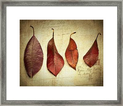 Framed Print featuring the photograph Family Of Four by James Bethanis