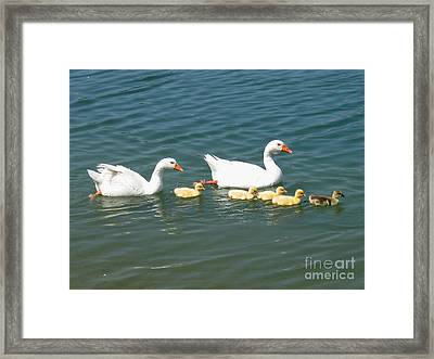 Family Outing On The Lake Framed Print by Ed Churchill
