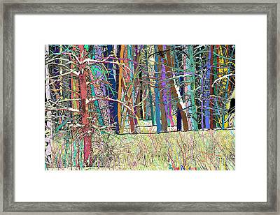 Fantastic Forest Framed Print by John Selmer Sr