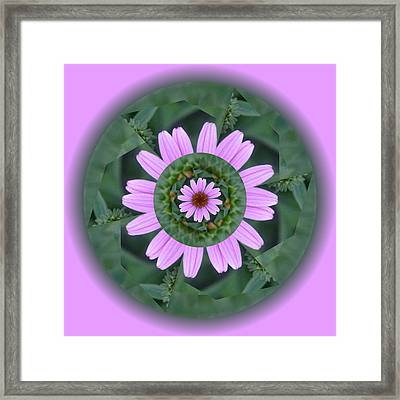 Fantasy Flower Framed Print by Linda Pope