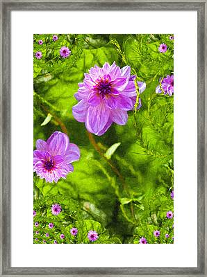Fantasy Pink Dahlia Framed Print by Design Windmill