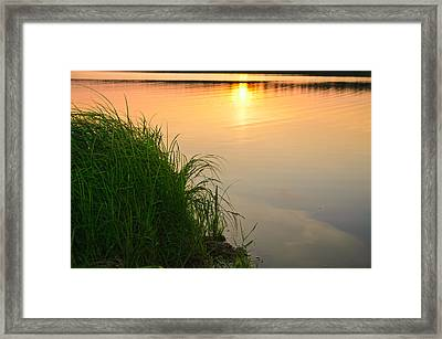 Farewell To The June Day Framed Print