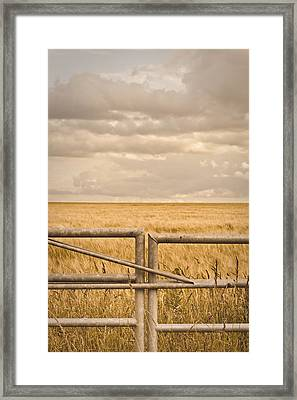 Farm Gate Framed Print by Tom Gowanlock