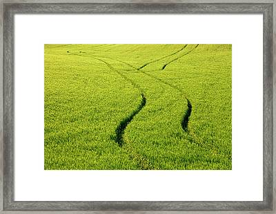 Farm Tracks Framed Print by Mike  Dawson