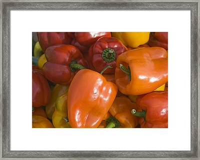 Framed Print featuring the photograph Farmers Market - 009 by Lisa Missenda